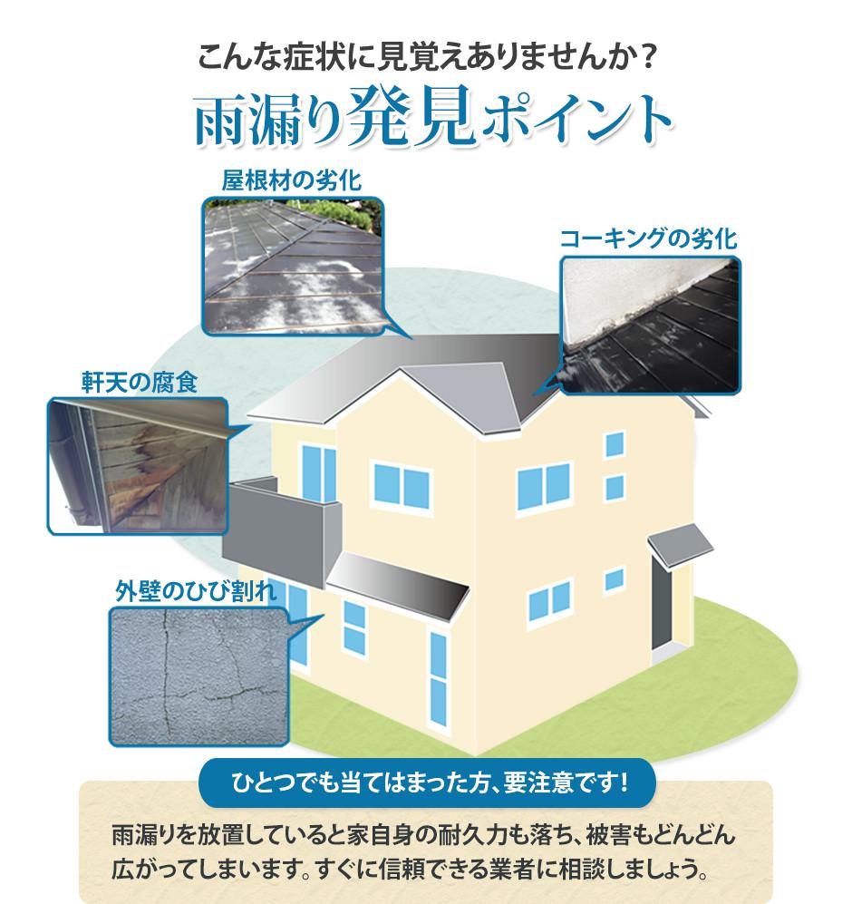 雨漏りを放っておくと家の躯体が傷みます