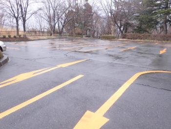 植物公園駐車場ライン更新工事