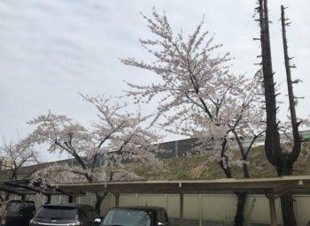 【八戸】西高校!!甲子園!! 外壁塗装|屋根塗装|雨漏り|外装リフォーム|塗装業者